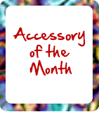 Special Offer - Accessory of the Month